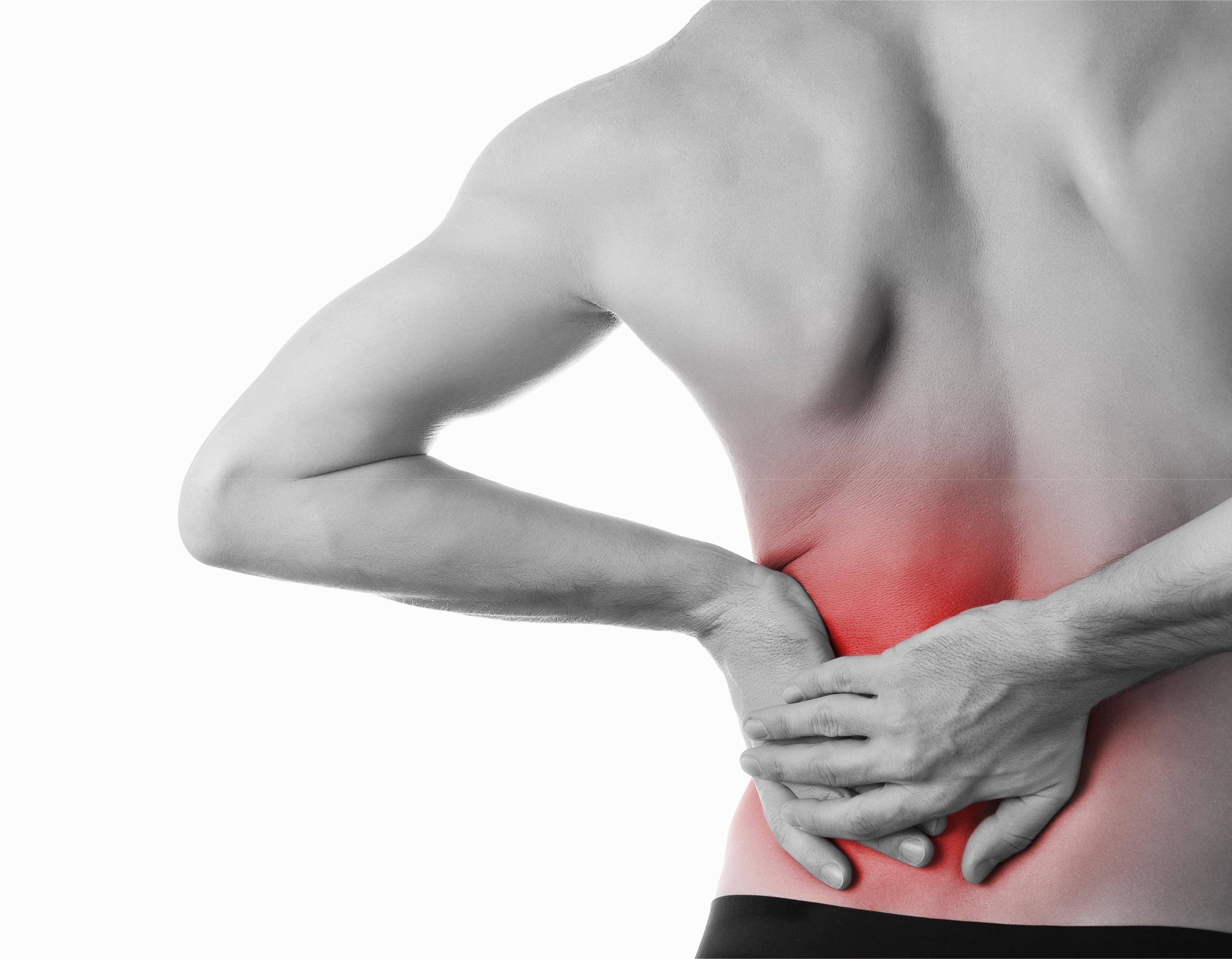 chiropractor bloomington low back pain