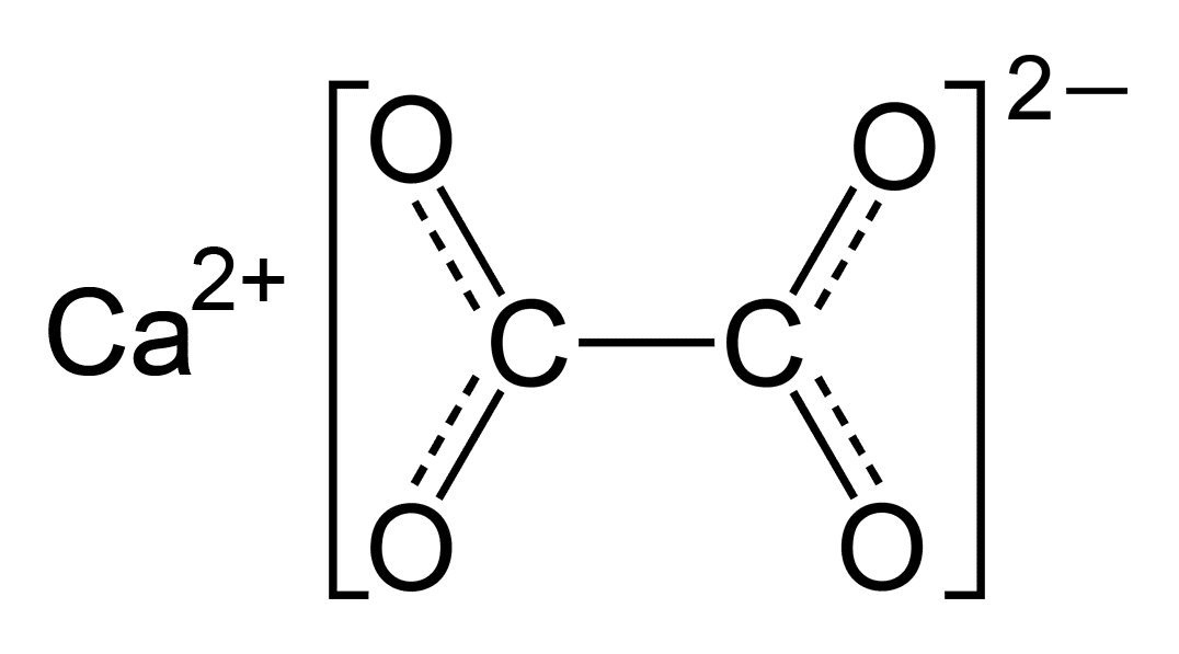Calcium oxalate crystal
